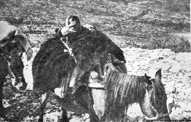 Dijete na konju