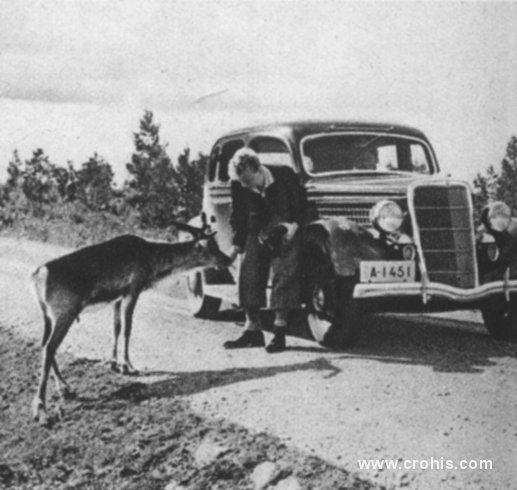 Automobilom u prirodu. Nafta i njeni derivati odigrali su osobitu ulogu u revolucioniranju transporta, širenjem upotrebe automobila. Brojna, do tada teško dostupna područja postala su pristupačna čovjeku u automobilu pa radilo se pri tome i o gotovo nedirnutoj prirodi. O ovome svjedoči i ova fotografija snimljena u blizini sjevernog polarnog kruga.