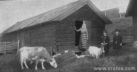 Švedsko selo. Početkom 20. st. seljaci čine najveći dio stanovništva Europe kao i stoljećima prije. To vrijedi, u većoj ili manjoj mjeri, i za zemlje koje danas doživljavamo kao tradicionalno industrijske, kao napr. Švedsku.