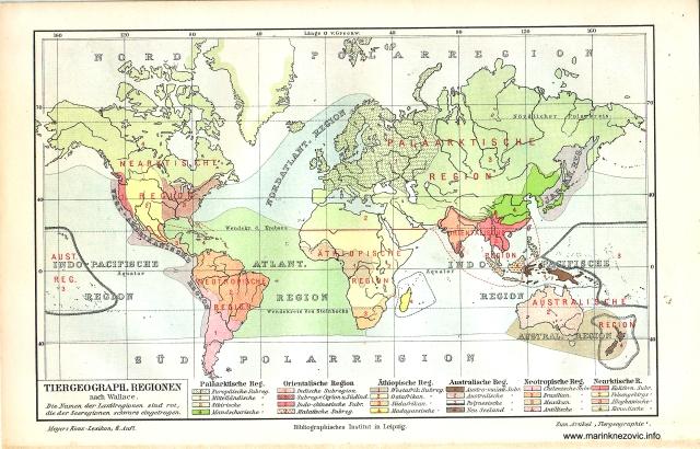 Regije proširenosti životinja / Tiergeographische Regionen nach Wallace