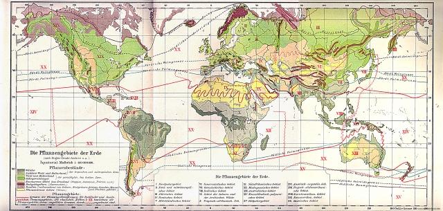Biljna područja svijeta