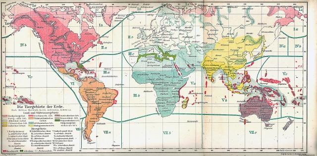 Životinjska karta svijeta