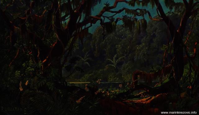 Brazilska prašuma / Urwald in Brasilien